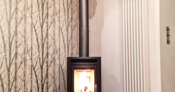 wood burning stove Farnham